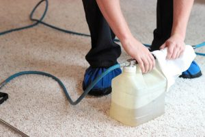 carpet-cleaning-pre-treatment