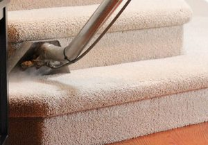 Steam Cleaning Vs Dry Cleaning Abbey Carpet Care